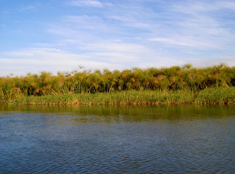 riviere okavango