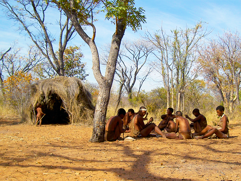 an examination of the kung bushman tribe This both represents the oldest evidence for human culture and attests to the bushmen having a one san tribe there but the kung bushmen most.