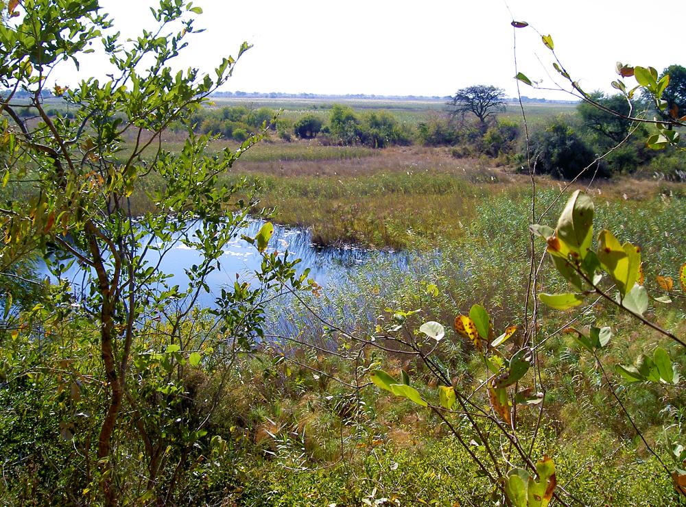 kwando river namushasha