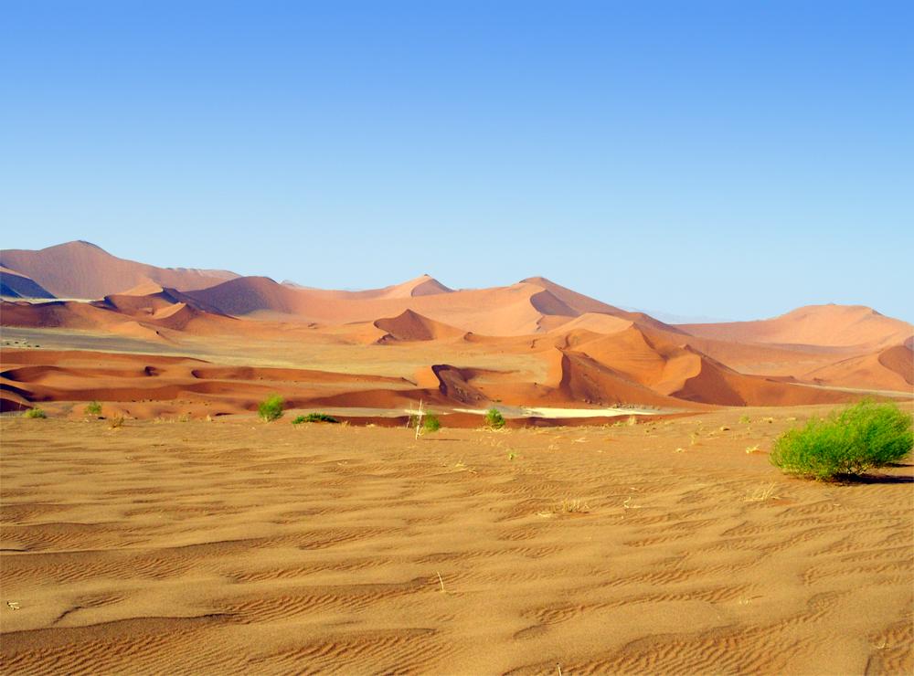 dunes du desert du namib