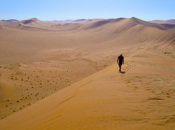 desert's namibian