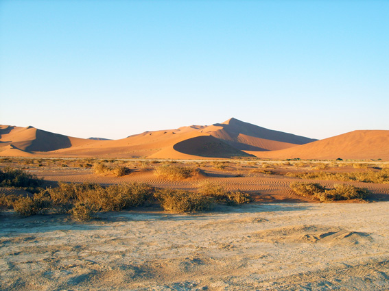 big daddy dune of Sossusvlei