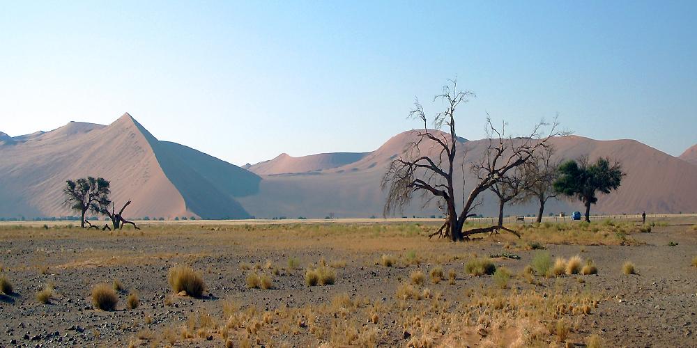 dune namib