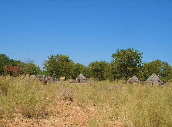 Himba village in Kaokoland
