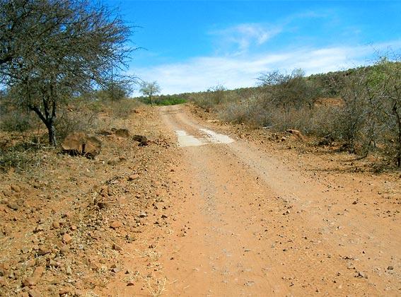 Waterberg road