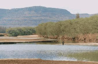 Caledon Nature Reserve