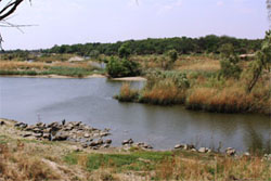 Wolwespruit Nature Reserve